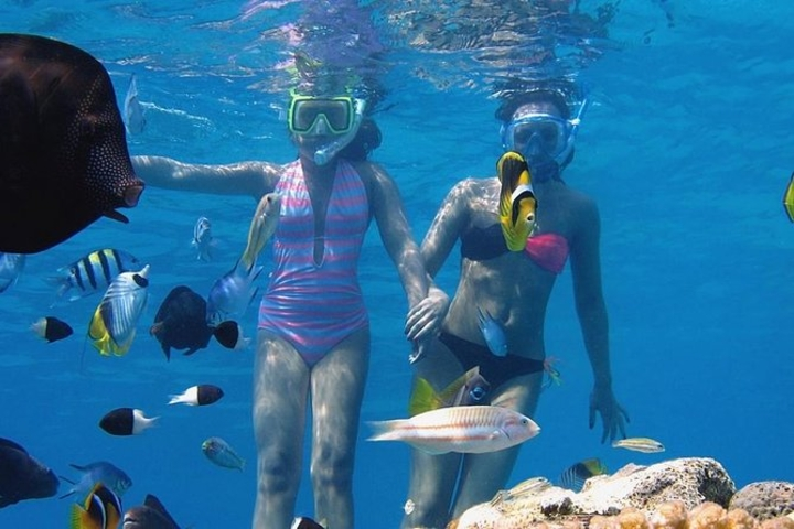 Snorkeling to Tiran Island